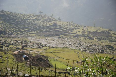 """A shot of typical Nepali terraced hillside and a house in rural Nepal. It shows the isolation of rural Nepal, the extreme vulnerability to quake damage and landslides."" --courtesy of Alden Towler"