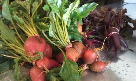 Beets from Z Food Farm.